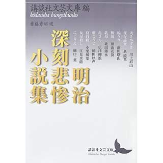 『明治深刻悲惨小説集』