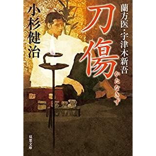 『刀傷 蘭方医 宇津木新吾(6)』