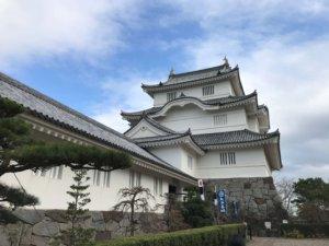 千葉県立中央博物館 大多喜城分館